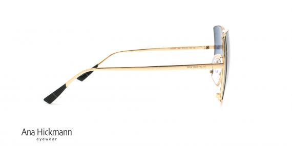 عینک آفتابی آناهیکمن - Ana Hickmann AH3189 - عکاسی وحدت - عکس زاویه کنار