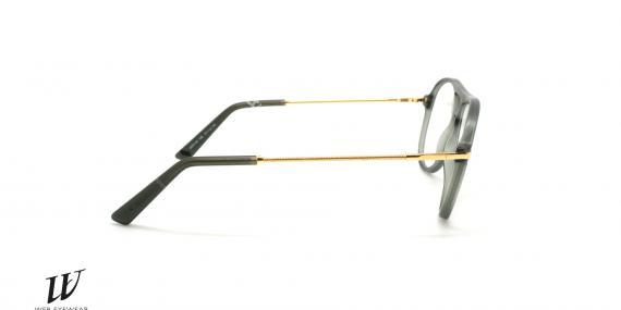 عینک طبی وب - WEB WE5146 - عکاسی وحدت - عکس زاویه کتار